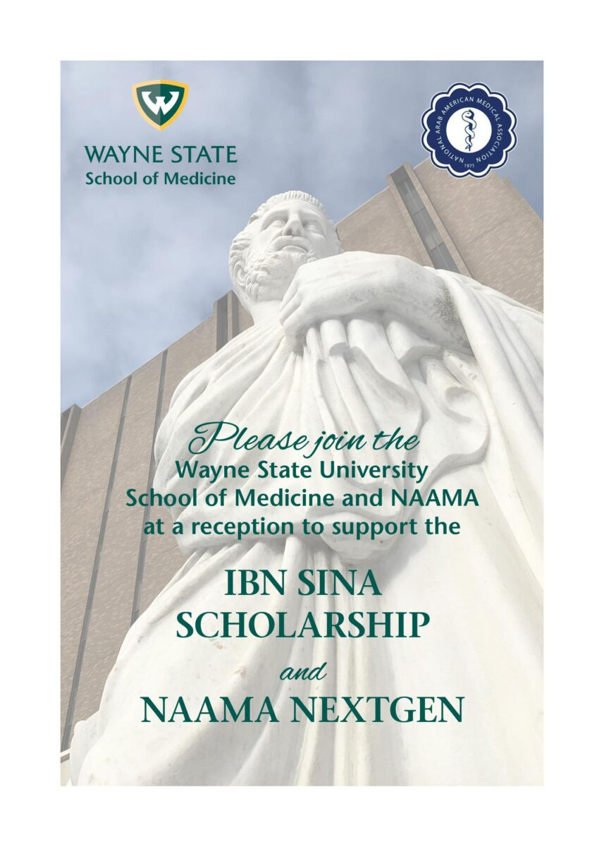 Read more about the article IBN SINA SCHOLARSHIP 2021